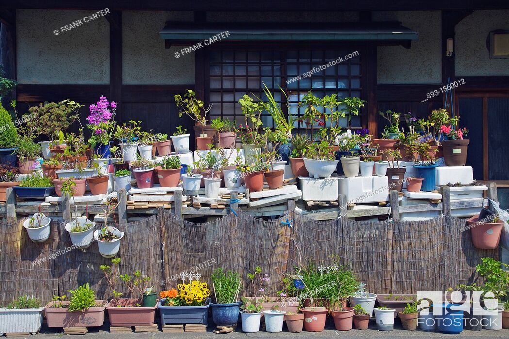 Stock Photo: Pots full of plants and flowers outside a Kyoto house.