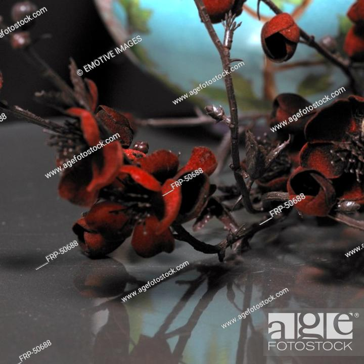 Stock Photo: A twig with red blossoms.
