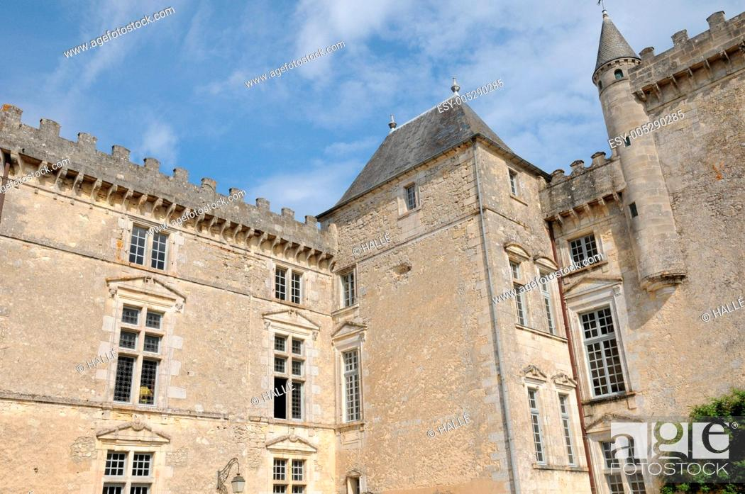 Stock Photo: the castle of Vayres in Gironde.