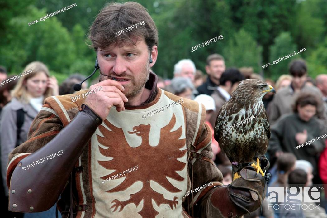 Common Buzzard Falconry And Birds Of Prey Show Ceremony For The Return Of The Remains Of Diane De Stock Photo Picture And Rights Managed Image Pic Gpt 28pf2745 Agefotostock