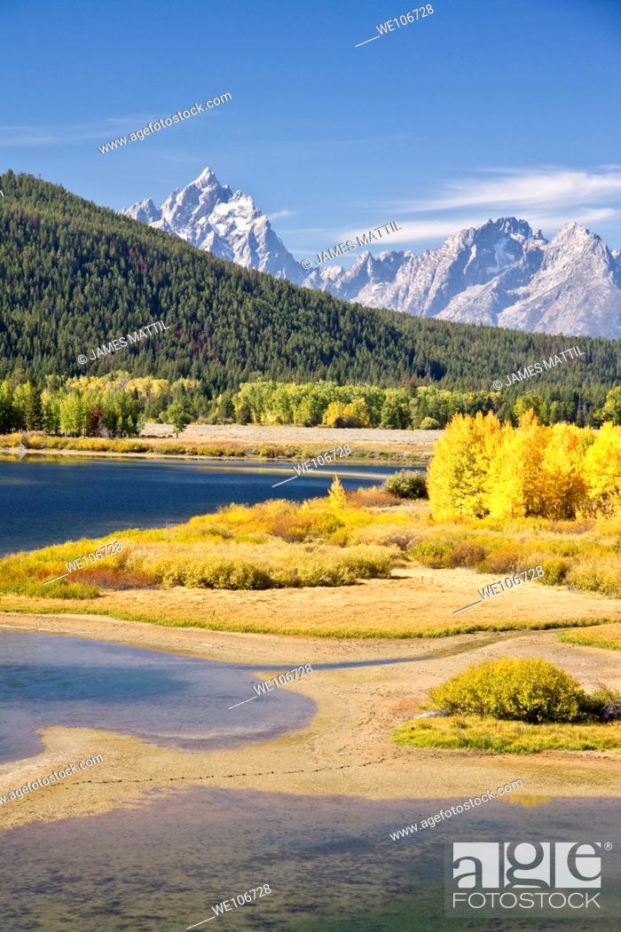 Stock Photo: Autumn foliage in the Grand Teton mountain range.