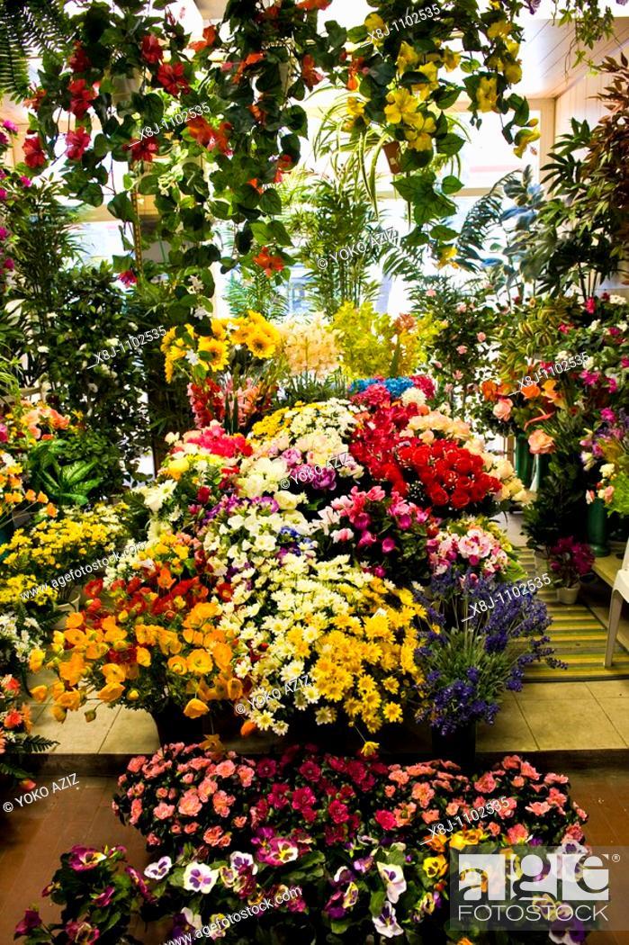 Stock Photo: flowers, flowers market, Ventimiglia, Liguria, Italy.