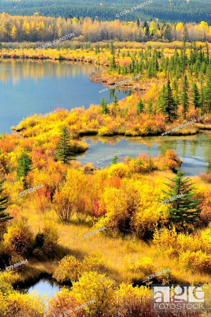 Stock Photo: Autumn colours on wetland vegetation at the Vermilion Ponds.