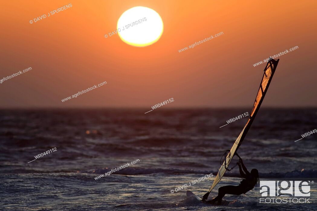 Stock Photo: A windsurfer rides the ocean waves into the sunset.