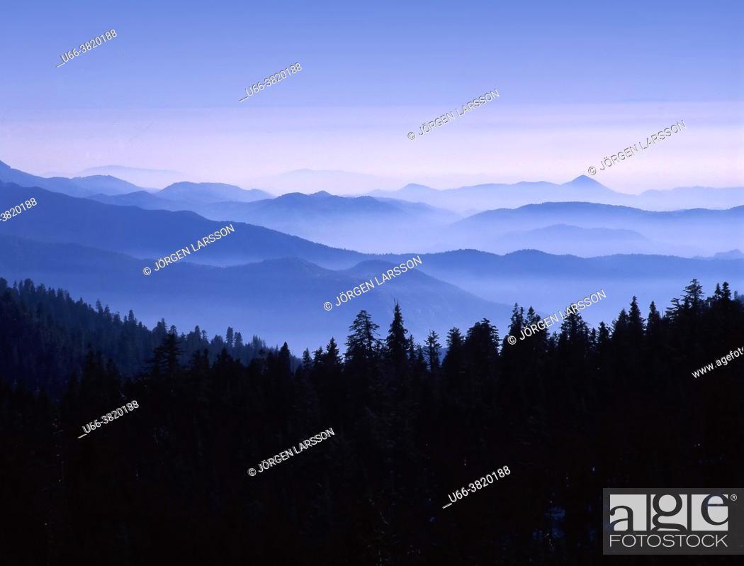 Stock Photo: sequoia national park California USA.