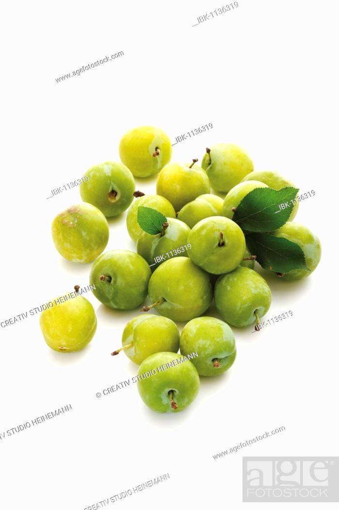 Stock Photo: Greengages (Prunus italica) with small leaves.