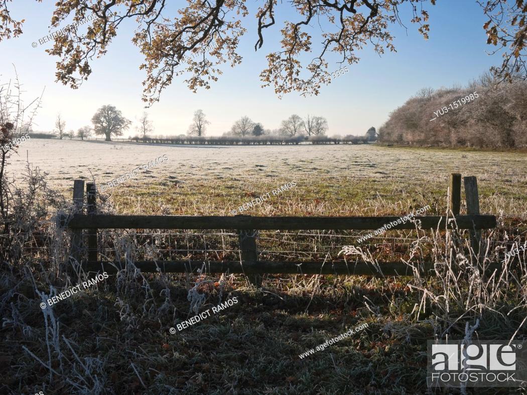 Stock Photo: Frosty morning scene, Oxfordshire, England, UK.