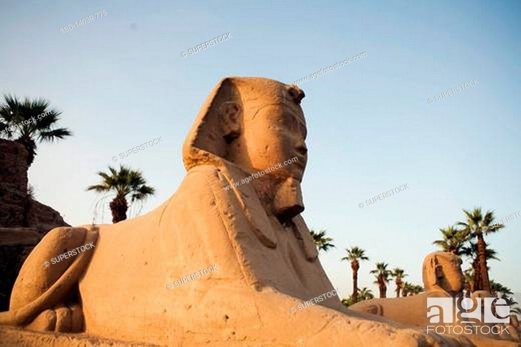 Imagen: Egypt, Luxor, Luxor Temple, Avenue of the Sphinxes.