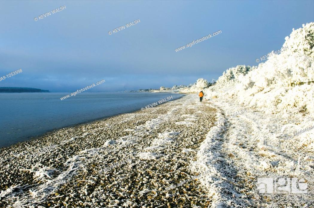 Stock Photo: Walkers on frozen beach,Findhorn on the Moray Firth, Scotland.