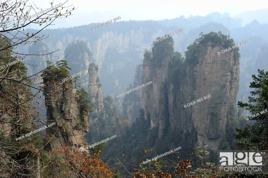 Stock Photo: Mount Tianzi, Zhangjiajie National Forest Park, Zhangjiajie, Hunan, China.