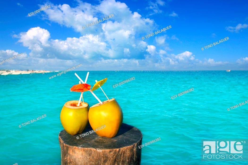 Photo de stock: fresh two coconuts juice cocktail water straws in caribbean sea trunk.
