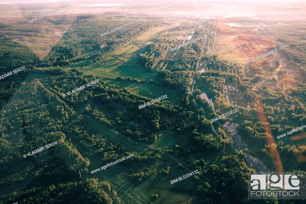 Stock Photo: Aerial view of trees in landscape.