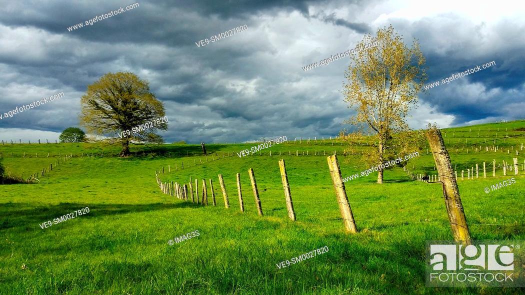 Stock Photo: Meadows near Nava village, Asturias, Spain.