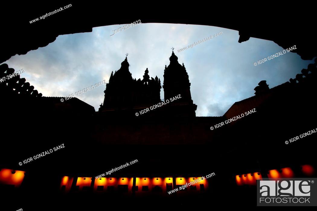 Stock Photo: 'Casa de las Conchas' (House of the Shells) in Salamanca (Castilla y León, Spain, Salamanca, Europe).