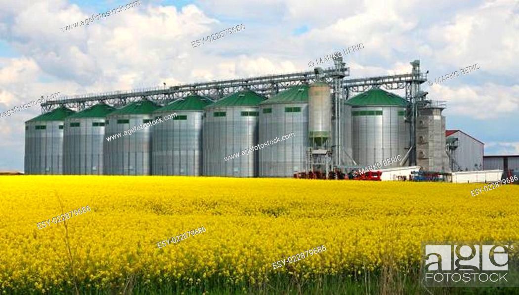 Stock Photo: Canola oil silo.