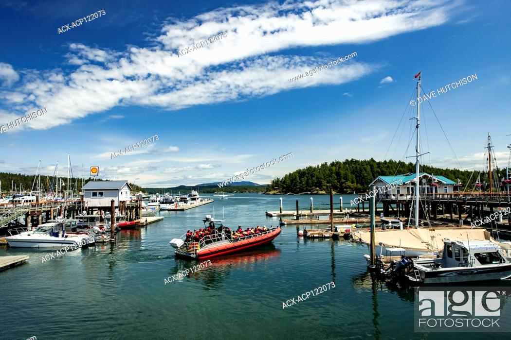 Stock Photo: Friday Harbor (whale watching), San Juan Island, Washington State, USA.