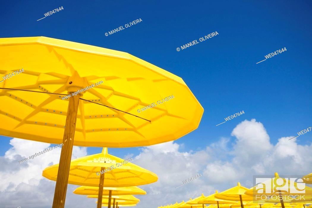 Stock Photo: yellow parasol.
