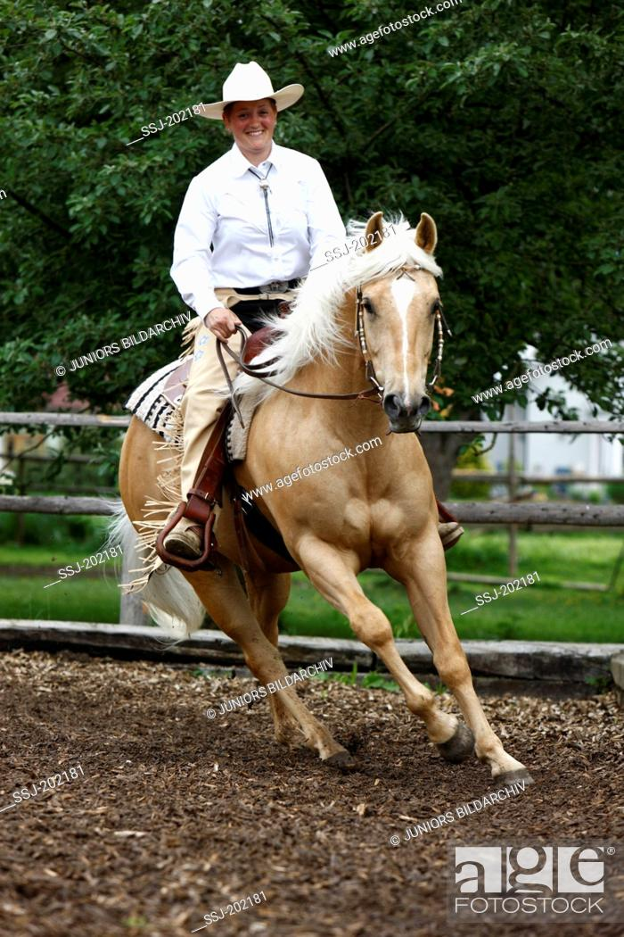 American Quarter Horse Rider Galloping With A Palomino Horse On A Riding Pen Foto De Stock Imagen Derechos Protegidos Pic Ssj 202181 Agefotostock