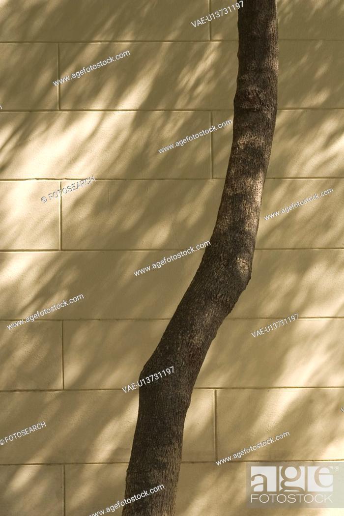 Stock Photo: Brick Wall, Close-Up, Day, Outdoors.