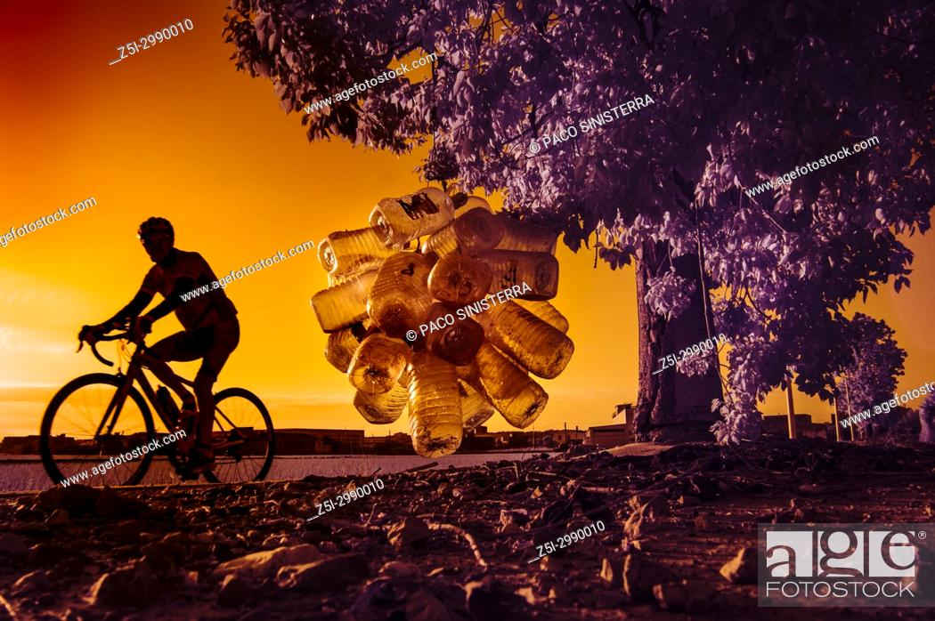 Stock Photo: cyclist passing in front of a tree with recycled bottles, Valencia.