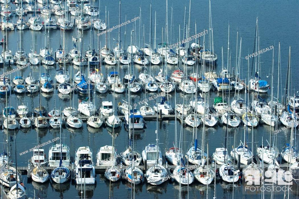 Stock Photo: Boats moored in marina, Brittany, France.