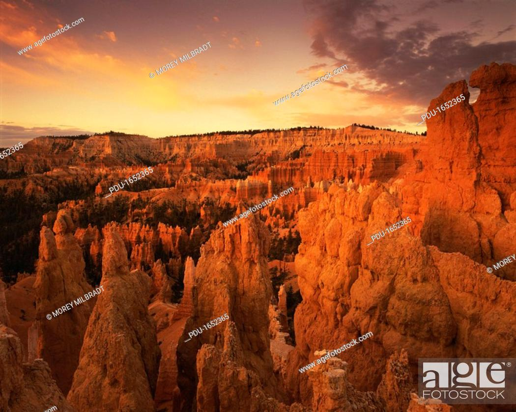 Stock Photo: Bryce Canyon National Park, Utah.
