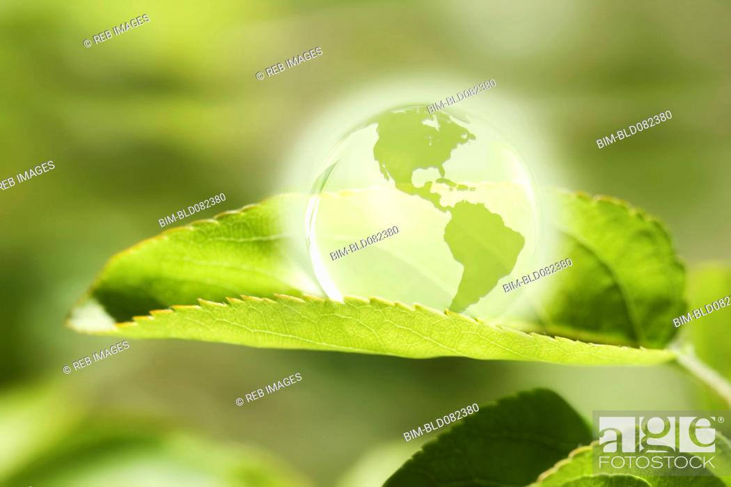 Stock Photo: Glass globe resting on green leaf.