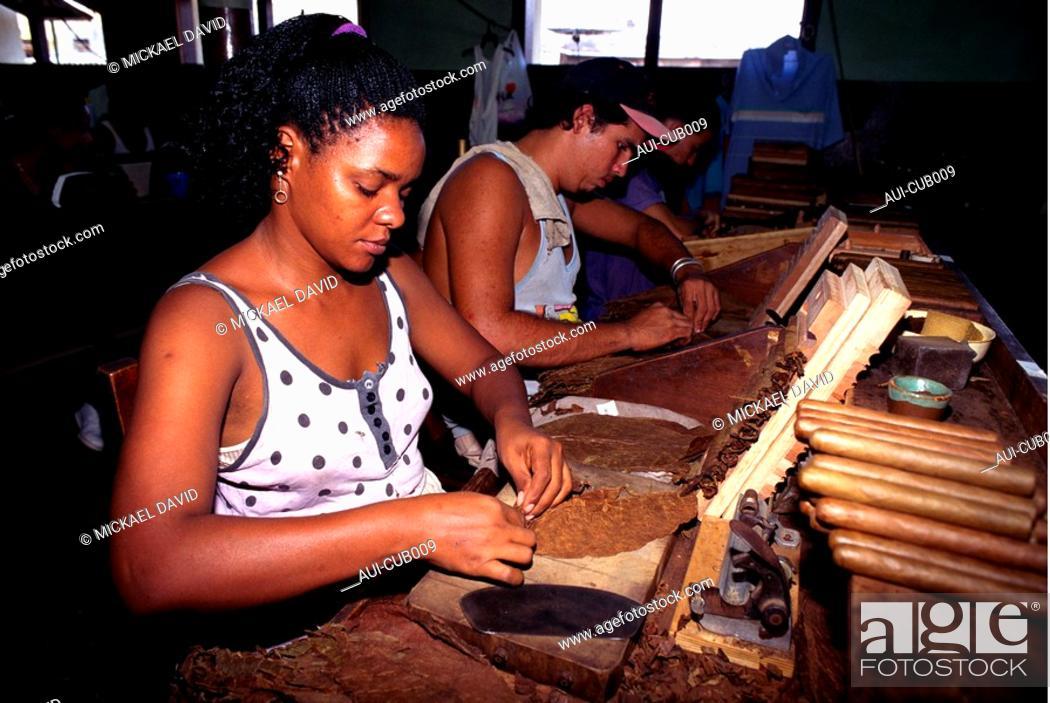 Stock Photo: Cuba - The Havana - Cigar Making.