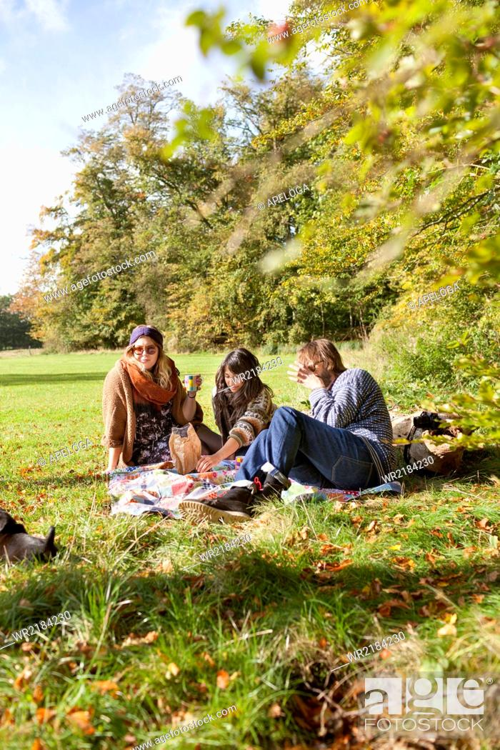 Stock Photo: Group of friends having a picnic in forest.