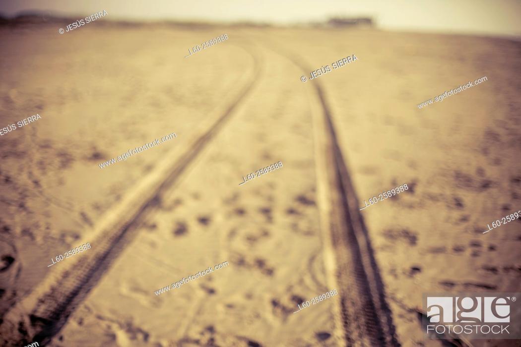 Imagen: Road, Delta del Ebro, Tarragona province, Spain.