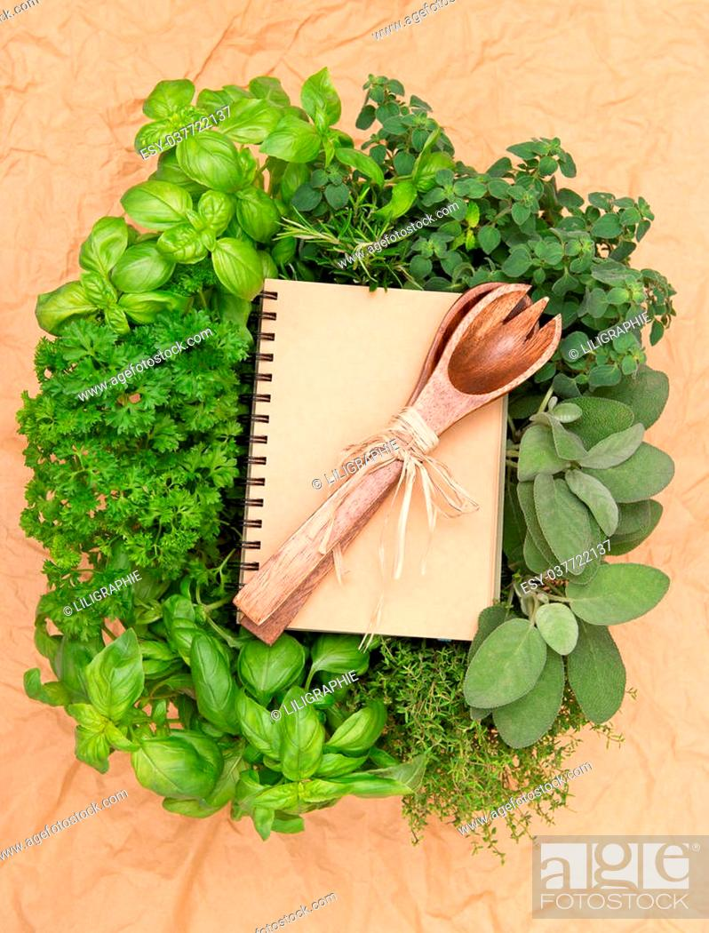 Stock Photo: empty recipe book with variety fresh herbs and decoration. cooking background.