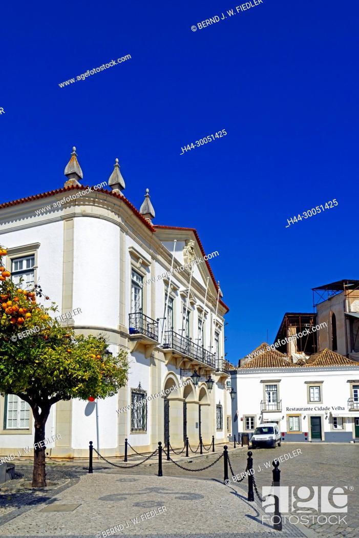 Stock Photo: City hall, orange tree, Faro Portugal,.