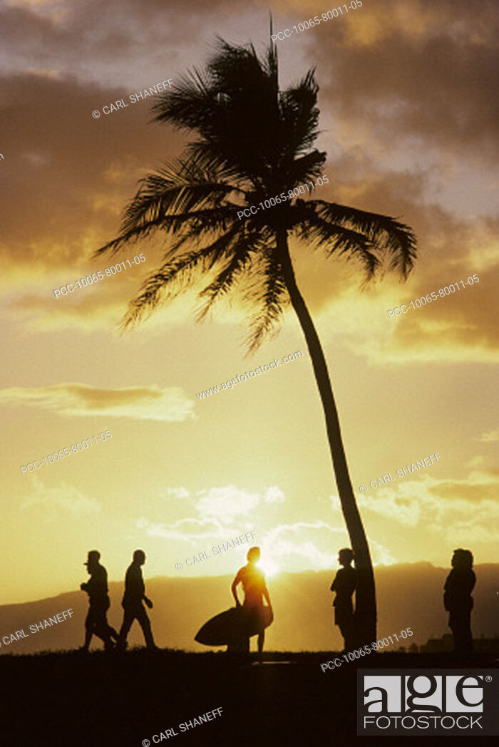 Stock Photo: Palm tree and yellow sunset sky, silhouette of people on the beach.