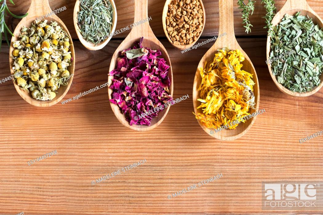 Stock Photo: Dried herbs on spoons on a wooden background with copy space - chamomile, horsetail, rose petals, fenugreek seeds, calendula, plantain.