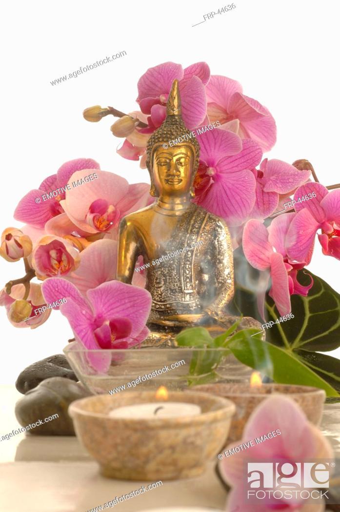 Stock Photo: Bouqet of ochids an a buddha.