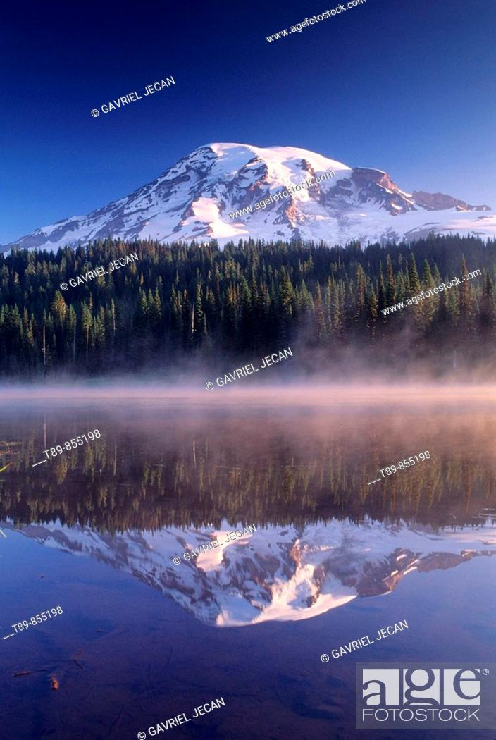 Stock Photo: Mt Rainier reflection.