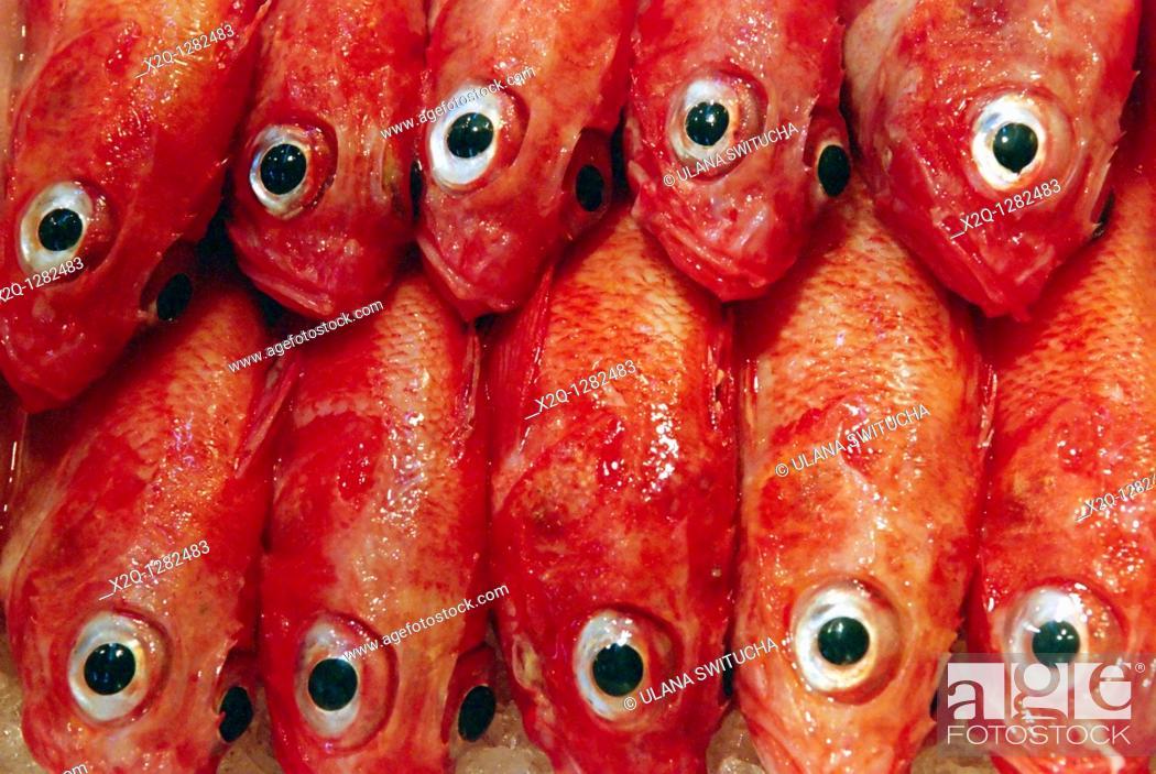 Stock Photo: Fish for sale at the Tsukiji fish market Tokyo.
