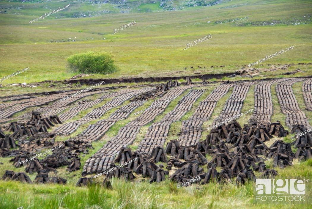 Imagen: peat winning in Kerry, Ireland.