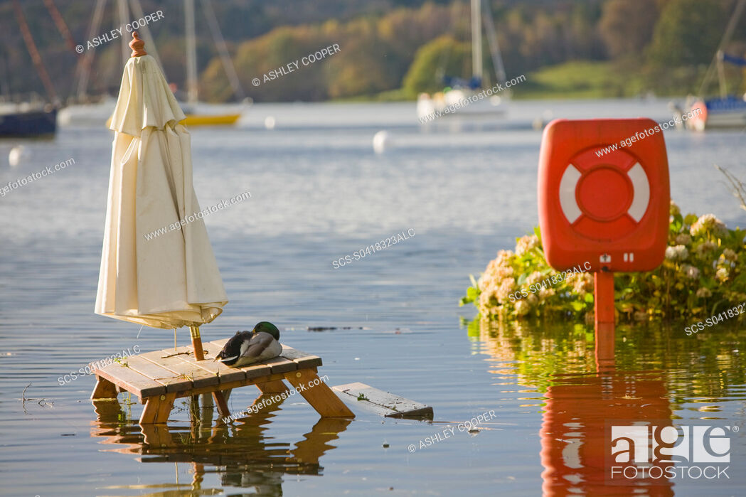 Stock Photo: Flooding in the beer garden of The Wateredge Inn at Waterhead on Lake Windermere in Ambleside UK Global warming is leading to a greater incidence of flooding.