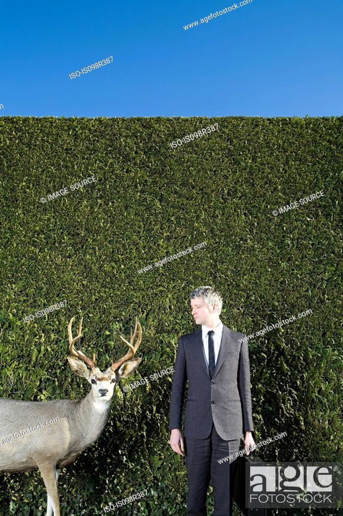 Stock Photo: Businessman looking at deer.