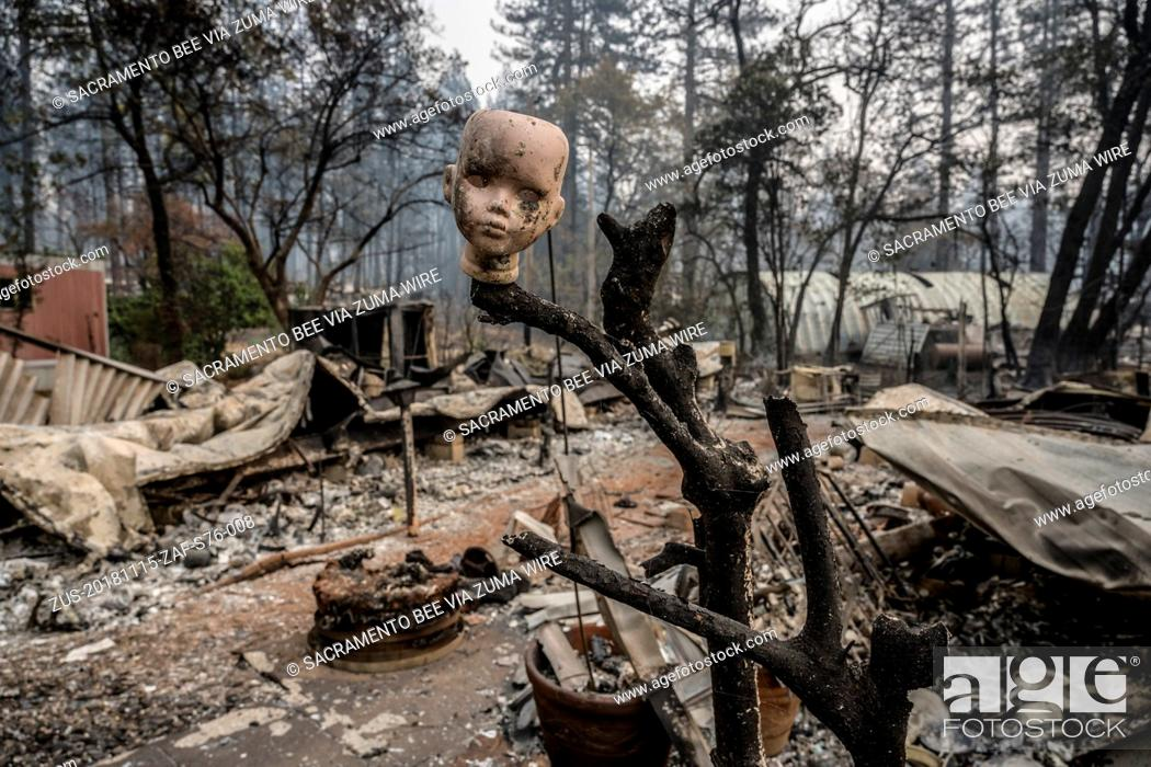 Stock Photo: November 15, 2018 - Paradise, California, U.S. - A ceramic doll head is perched on a branch as one of the only remains infant of a burnt mobile home inside the.