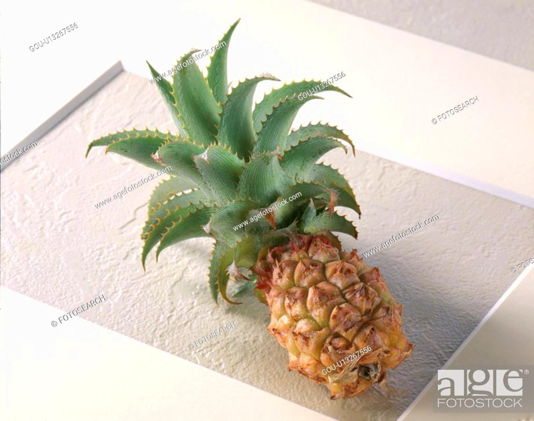Stock Photo: Pineapple, Mini,.