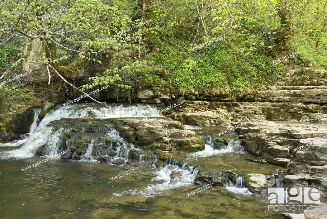 Photo de stock: Gandara Creek and Las Pisas Waterfall, Villabascones, Las Merindades County, province of Burgos, Castilla y Leon, Spain.