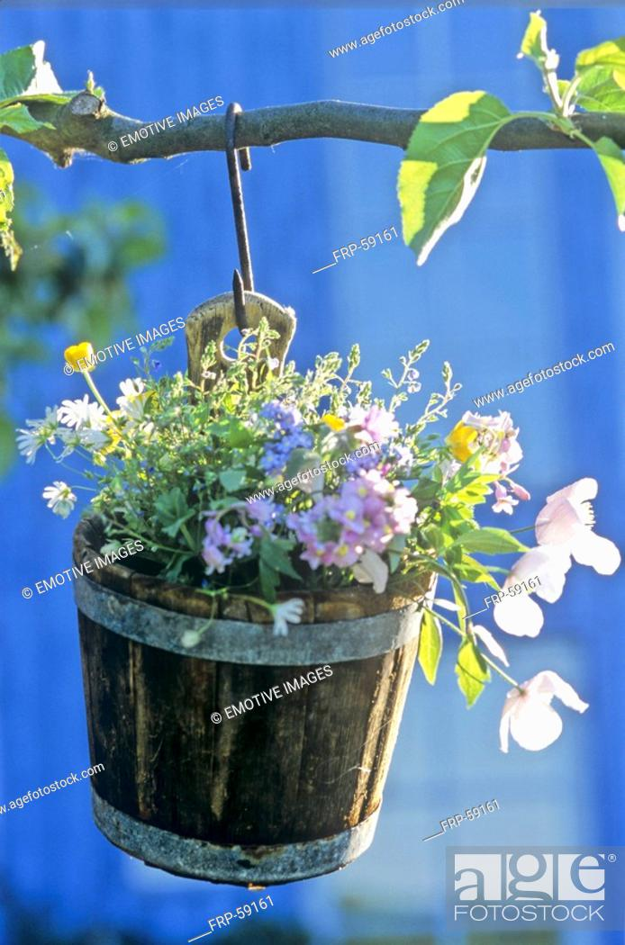 Stock Photo: Flowers in a hanging wooden bucket.