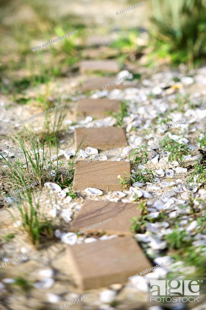 Stock Photo: Stepping stone pathway with oyster shells.