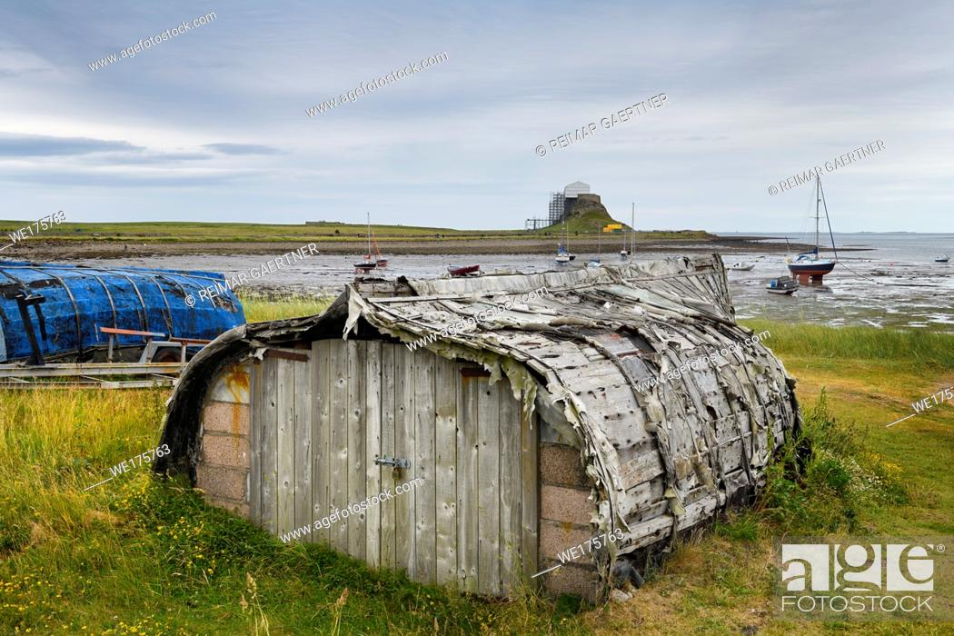 Stock Photo: Weathered hull of shed made of overturned boat cut in half on Holy Island with Lindisfarner Castle ruins under renovation England UK.
