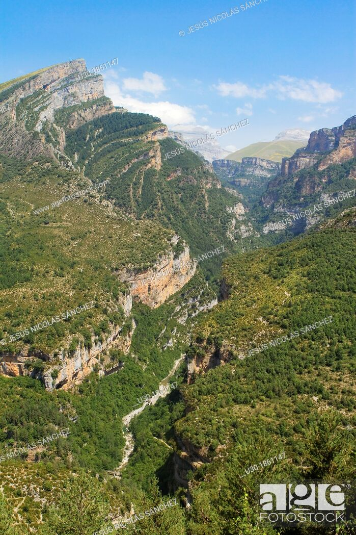 Imagen: Canyon of Añisclo Valley, belonging to Ordesa y Monte Perdido National Park  Pyrenees  Fanlo  Huesca province  Aragón  Spain.