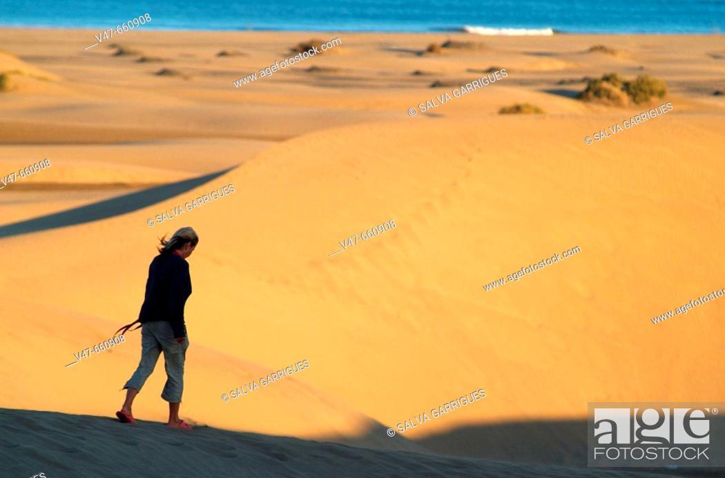 Stock Photo: Walk, walk, Maspalomas Oasis, Playa Del English, Grancanaria, Grancanarias Islands Cabarias, desert sunset, beaches, beaches, national park, national reserba.