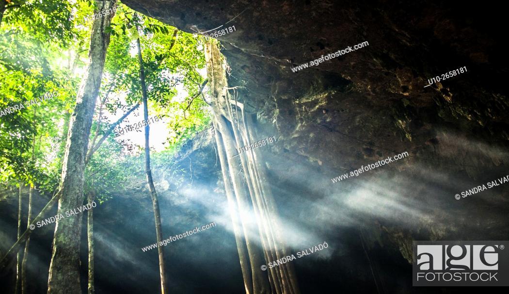 Photo de stock: Caverna Xaman, San Juan de Dios, Cobá. Quintana Roo, México.