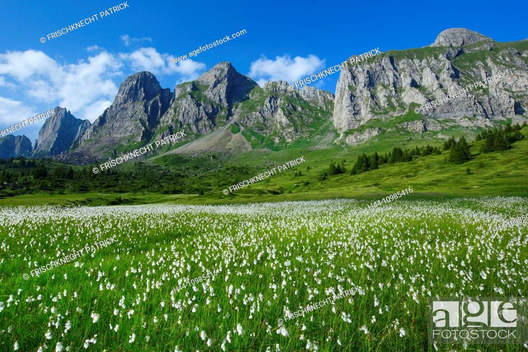 Stock Photo: Alvier mountains in the canton of St. Gall.